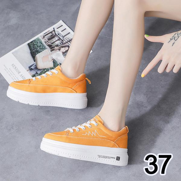 SHE016YW37 黃色37號